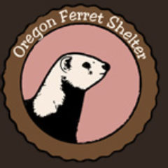 Oregon Ferret Shelter