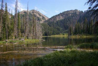 East Fork Wallowa RiverAneroid Lake Trail Junction