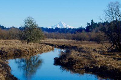 Salmon Creek Hike  Hiking in Portland Oregon and Washington