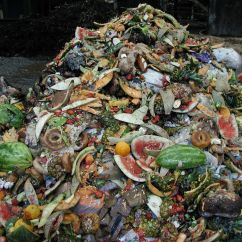 Compost Bin For Kitchen Hotels In Miami With Public Comment On Draft Food Scraps Policy Begins | Metro