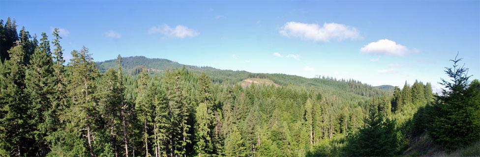Skookum Creek Campground