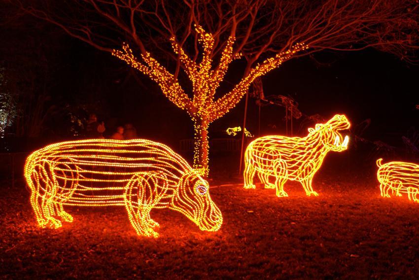 Oregon Zoo Lights 2017