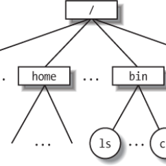 Directory Tree Diagram Intermediate Switch Wiring Legrand 1 5 An Overview Of The Unix Filesystem Understanding Linux Example A