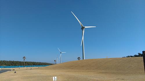 大東温泉 風車