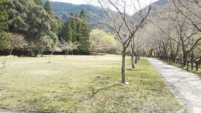 小川の里キャンプ場フリーサイト
