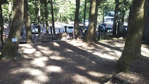 モミの木キャンプ場木陰サイト