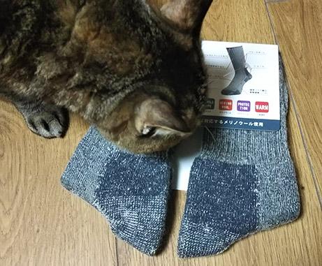 メリノウール靴下
