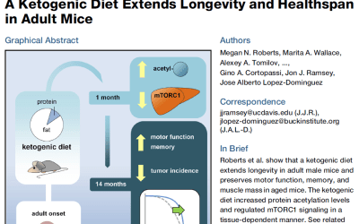 High Fat Diet Extends Longevity and Healthspan