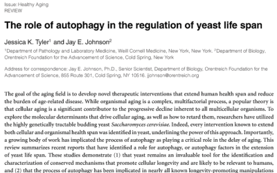 The role of autophagy in the regulation of yeast life span