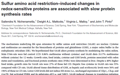 Sulfur amino acid restriction–induced changes in redox-sensitive proteins are associated with slow protein synthesis rates