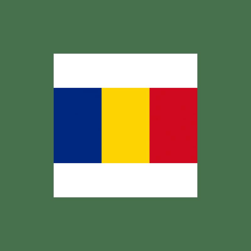 Achat Lei Roumains RON En Ligne Ou Au Guichet Livraison