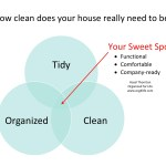 How Clean Does Your House Really Need To Be?