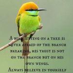 Always Believe in Yourself