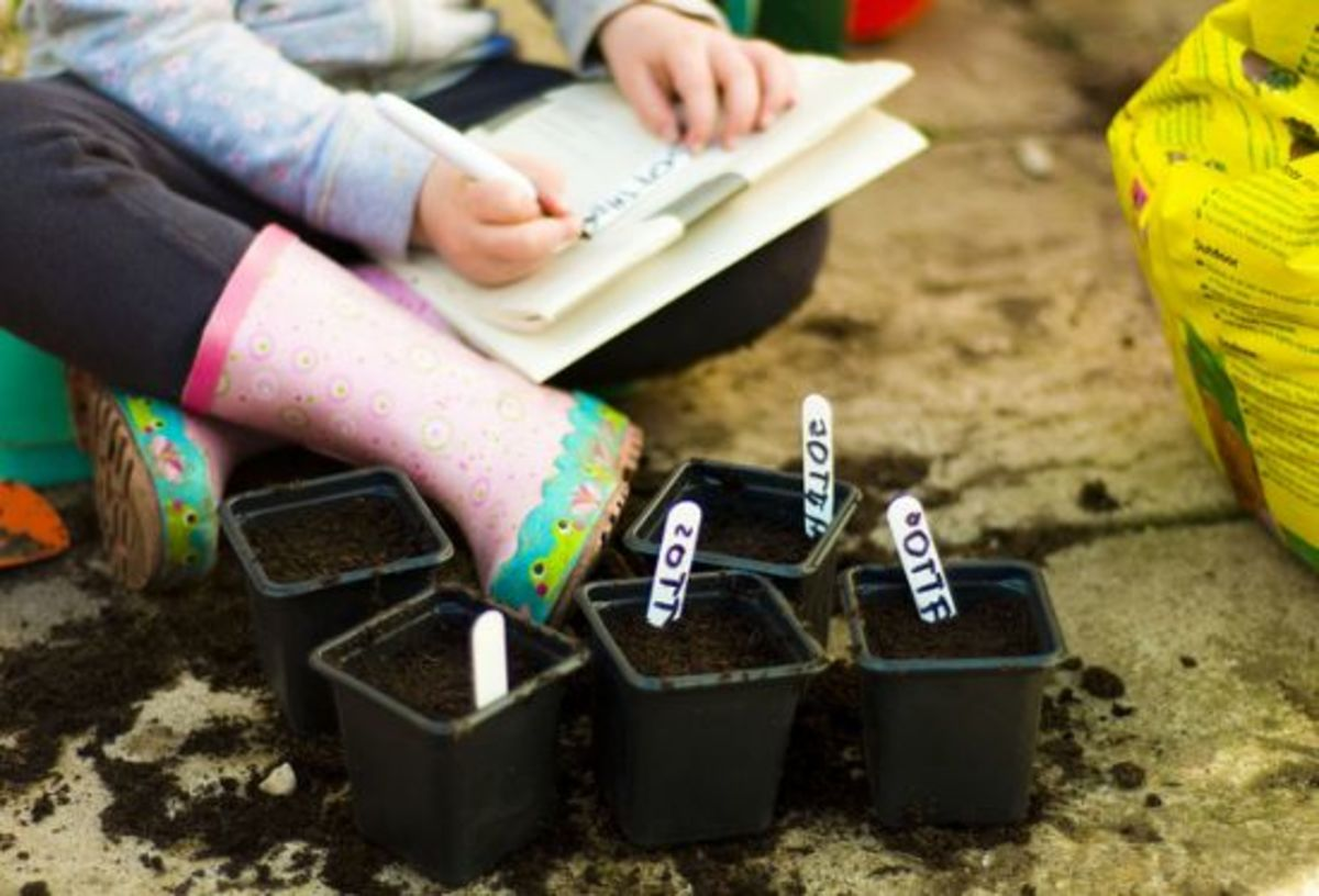 5 Whimsical Ways To Label Your Seedlings