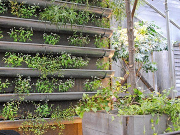 Vertical Garden Rain Gutters As
