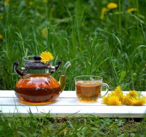 Dandelion tea in nature