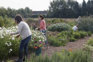 Create your own cutting garden workshop
