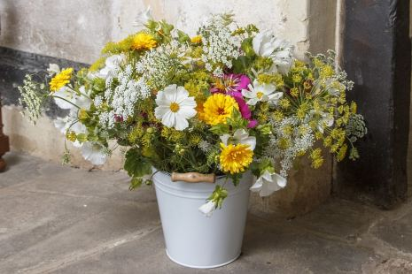 A year of flowers: eight deliveries from the Organic Blooms cutting gardens.