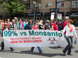 """BIG WIN Against Monsanto - California 'Roundup' Will Be Labeled """"Cancer Causing"""""""