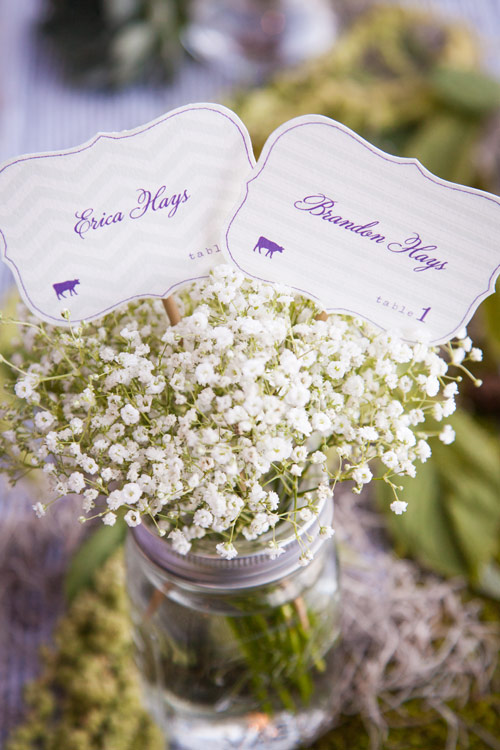wedding-erica-brandon-10