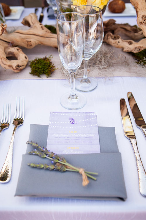 wedding-erica-brandon-11