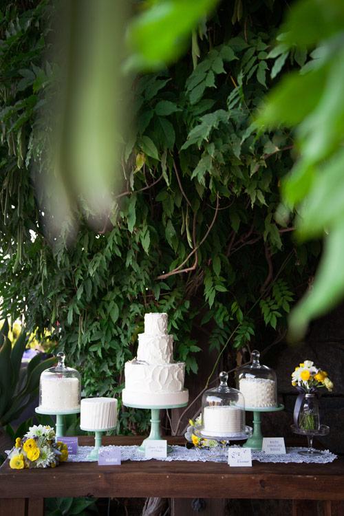 wedding-erica-brandon-14