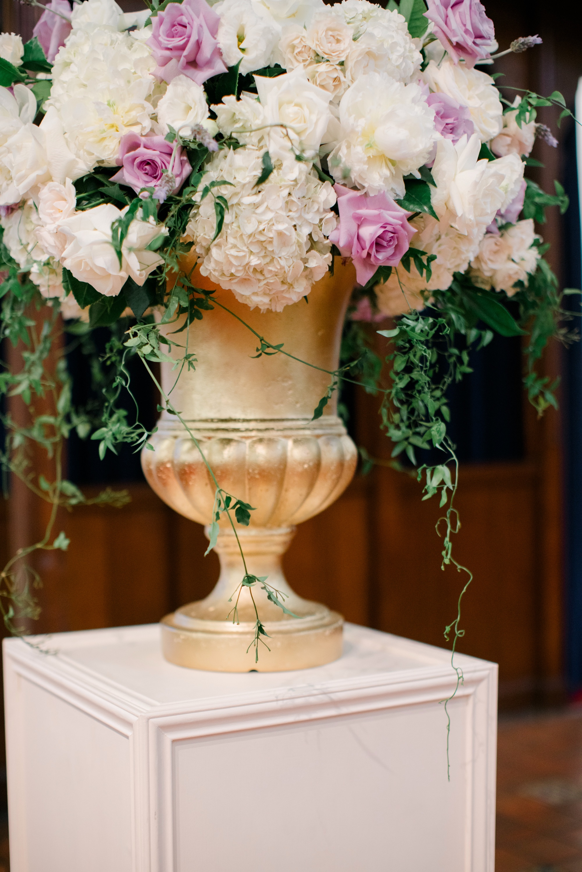 Urns in Varying Colors