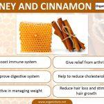 10 amazing benefits of honey u0026 cinnamon organic factshoneycinnamoninfographic