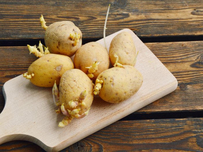 8 Ways to Control Potato Sprouts  Organic Facts