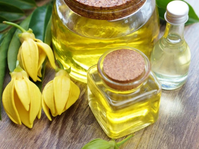 Image result for Ylang-Ylang essential oil