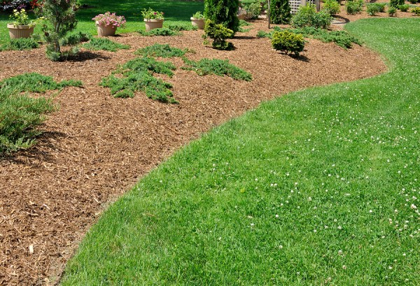 benefits of organic mulch