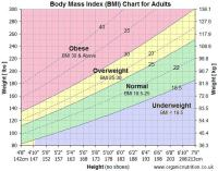 Bmi Scale Chart Nhs - Bmi chart for men women weight index ...
