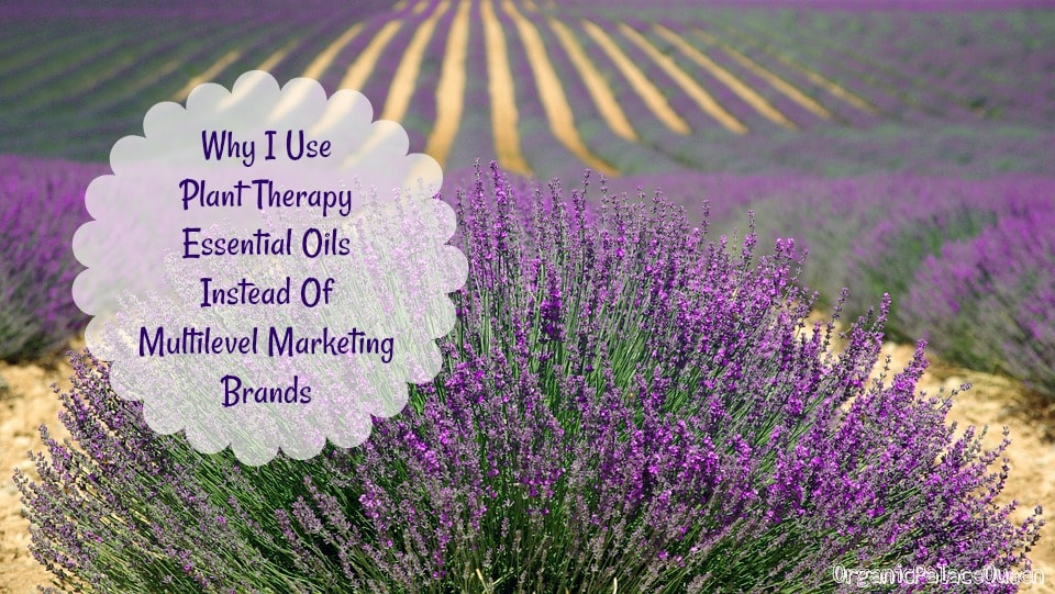 Plant Therapy essential oil reviews
