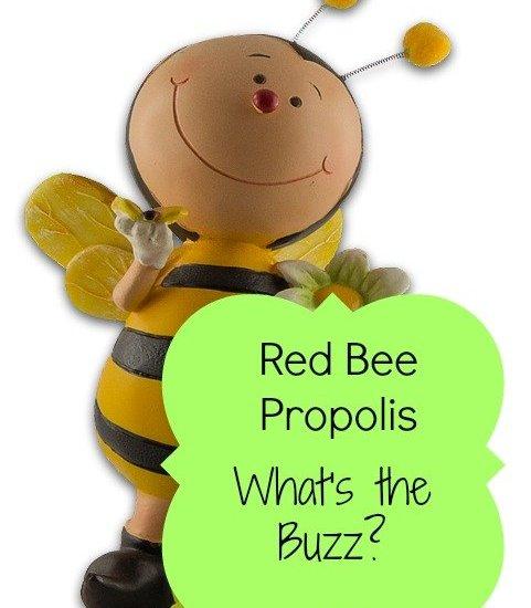 red bee propolis benefits