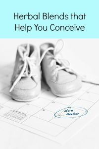 herbs that help you conceive