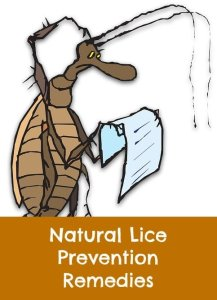 natural lice prevention remedies