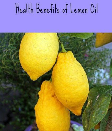 Plant Therapy essential oil lemon