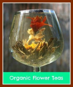 organic blooming tea pot sets