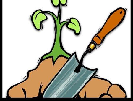 where to buy organic garden soil