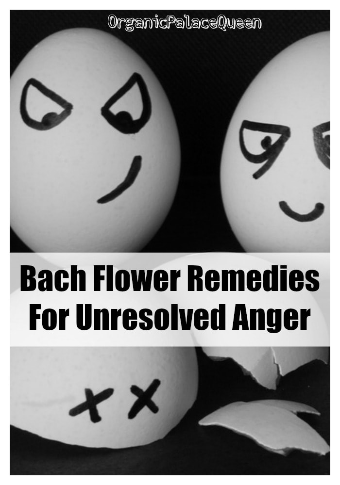 Flower essences for anger and resentment