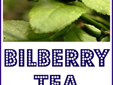 bilberry tea for inflammation