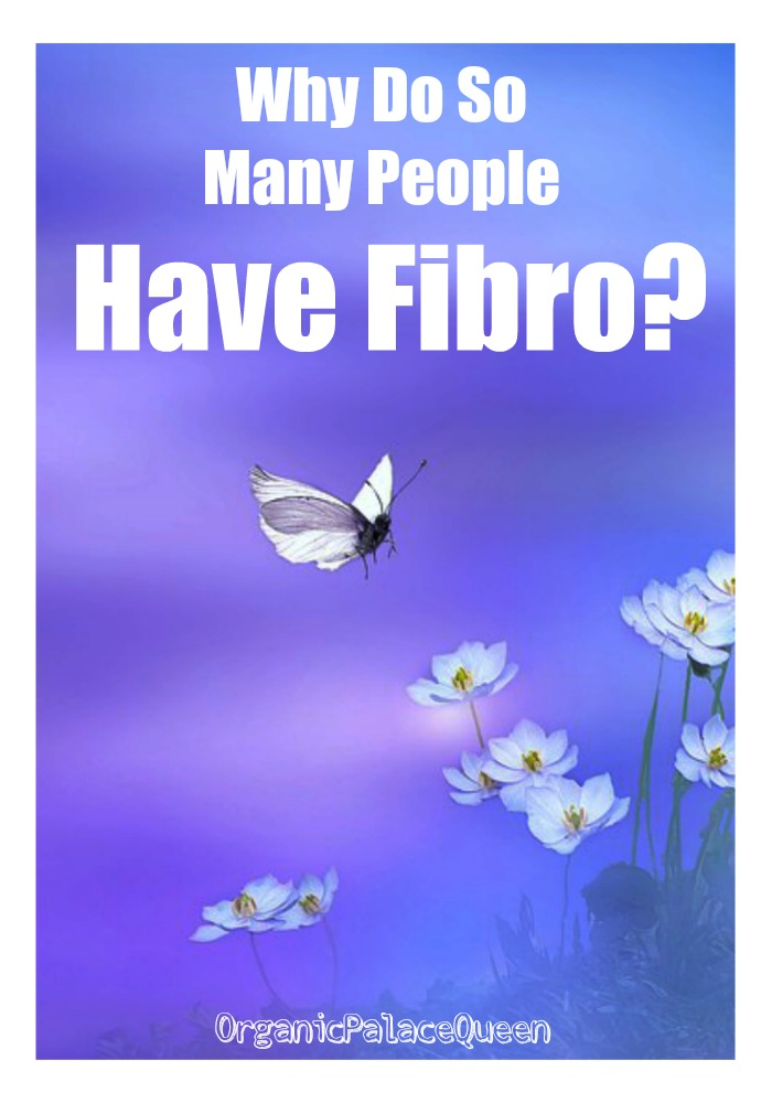 Why do so many people have fibro