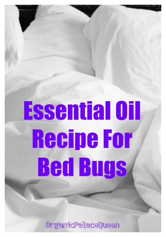 Essential oils for bed bug control