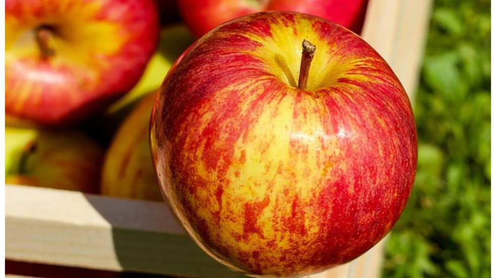 is apple cider vinegar a miracle cure
