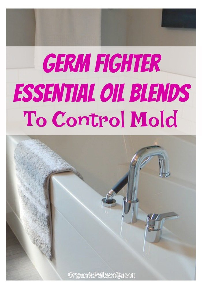 Good essential oils to fight mold in your house