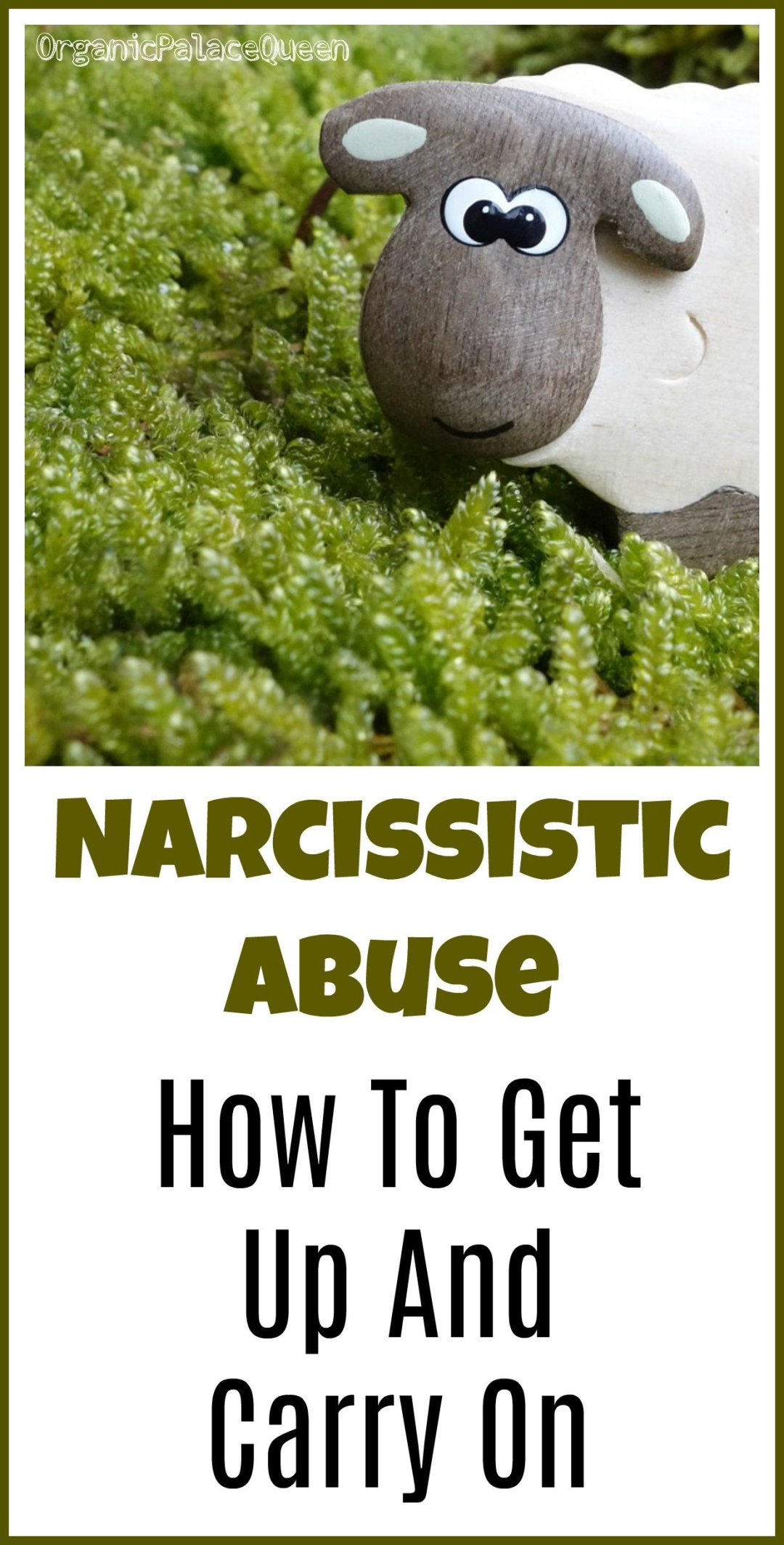 You survived narcissistic abuse - now what