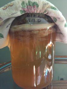 homemade kombucha tea