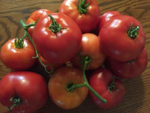 what to do with extra tomatoes