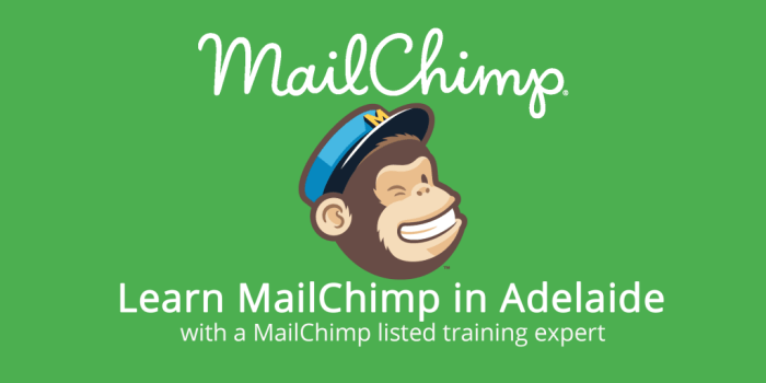 MailChimp logo with text illustrating MailChimp classes in Adelaide