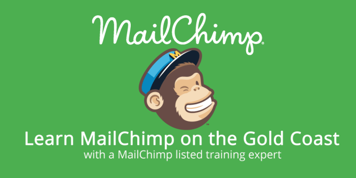 MailChimp logo with text describing classes on the Gold Coast